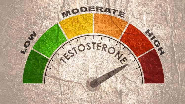 Hormone testosterone level measuring scale.
