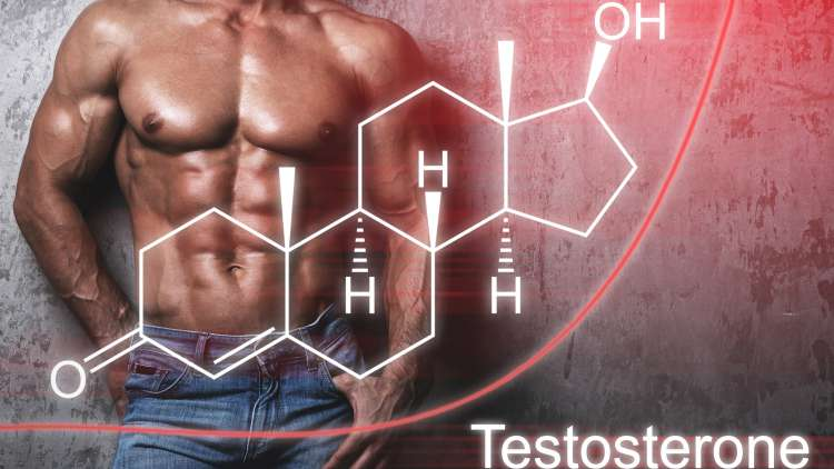 increasing your testosterone chart